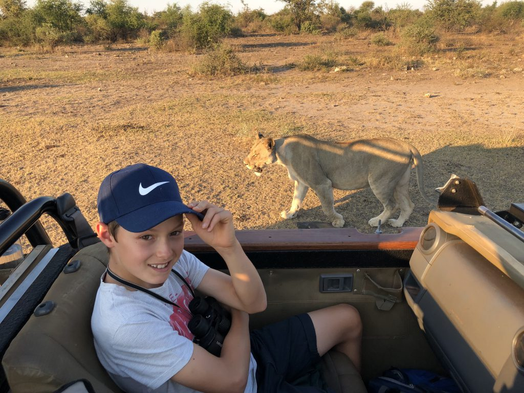 Jack Frater is unfazed by a passing , fully fed lioness (photo by Reuben Johann Grimsell)