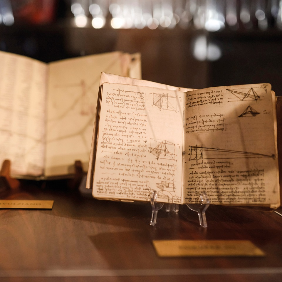 Codices books of notes and sketches that remain the primary insight to Leonardo's genius