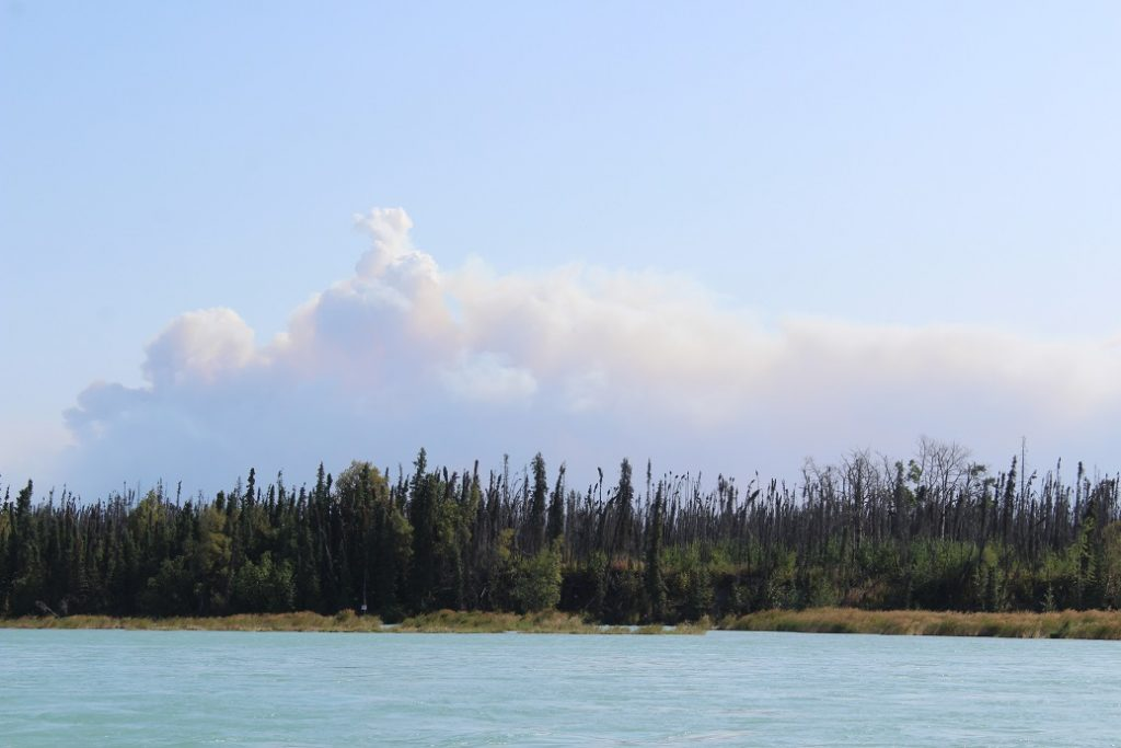 A billowing cloud of smoke from the Swan Lake Fire seen from the Kenai River