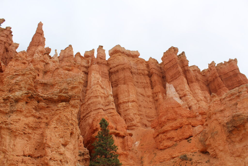 On the Queens Garden hike in Bryce Canyon NP