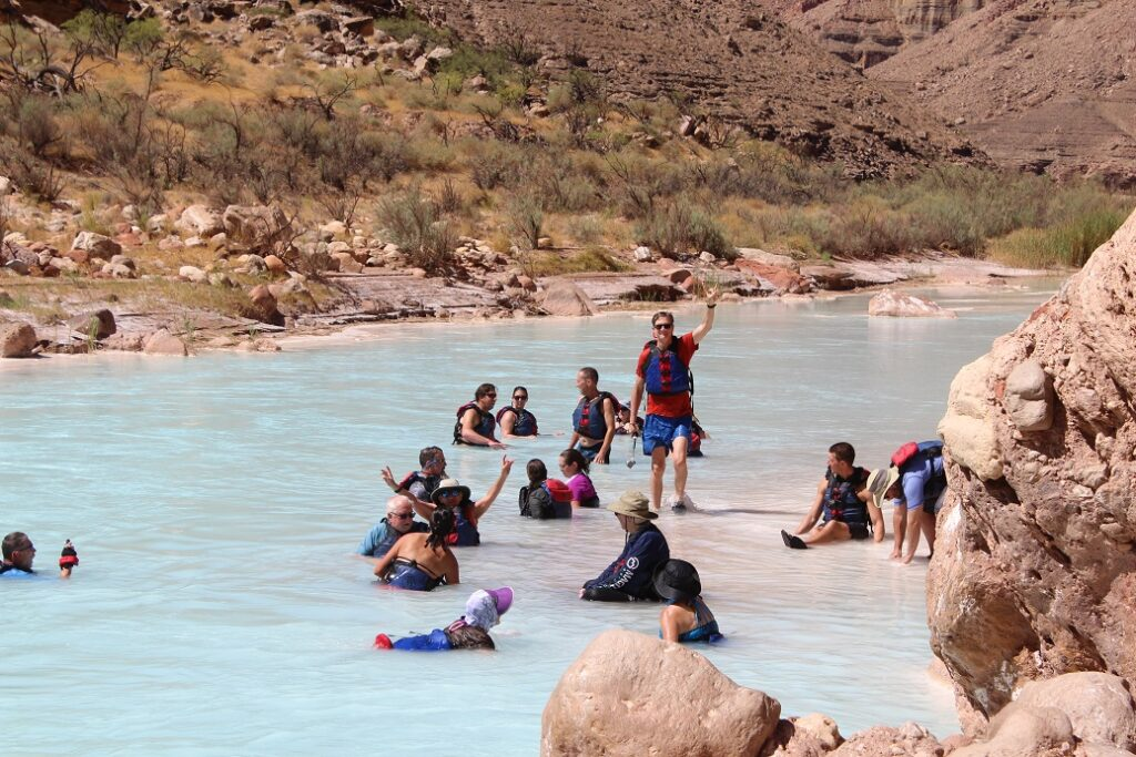 Soaking in the relatively warmer waters of the Little Colorado River