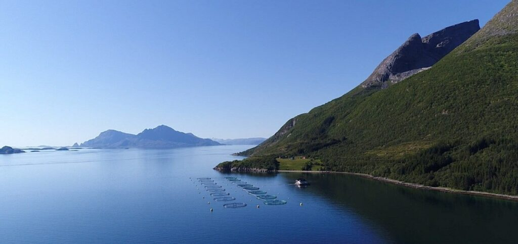 Fish pens at Aerial view of Norway's Kvarøy Arctic