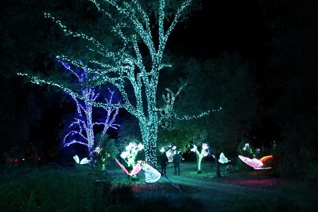 Garden of Lights in Redding CA