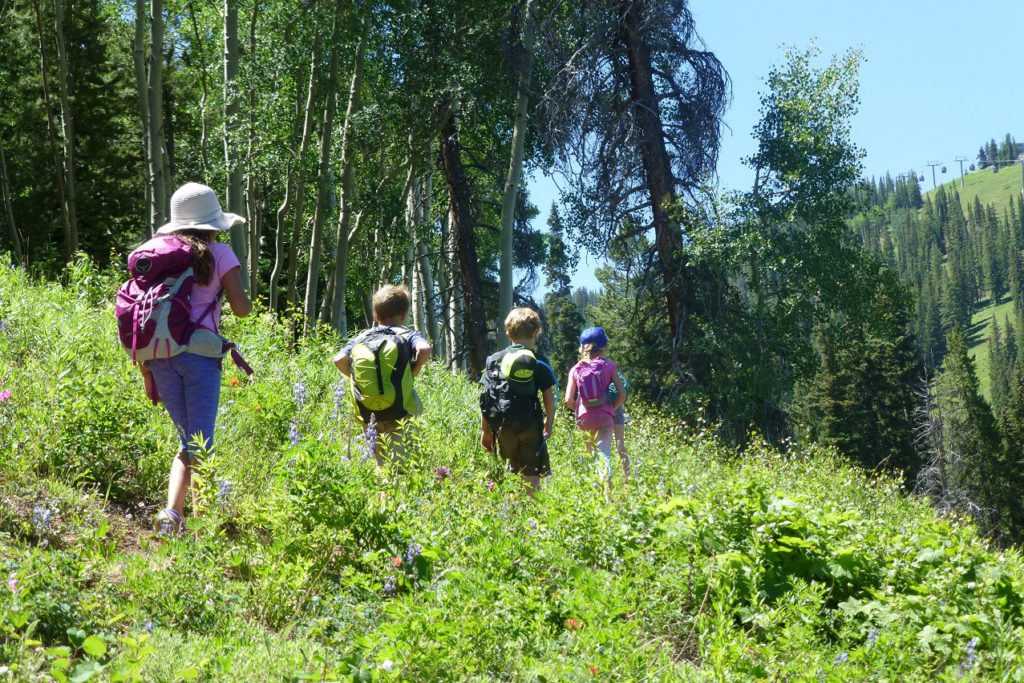 The Aspen Center for Environmental Science offers free nature walks at the top of Ajax and Snowmass mountains all summer