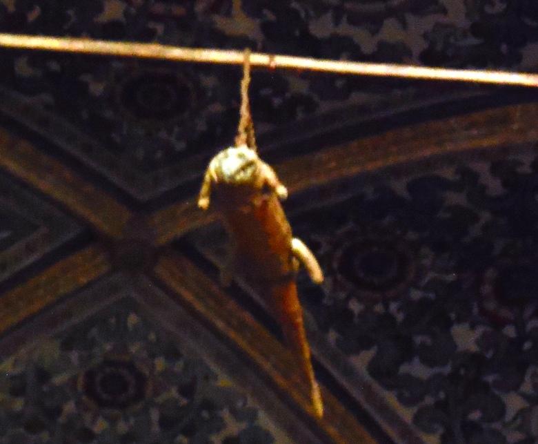 500 year old crocodile hanging in church of Santa Maria del Grazie