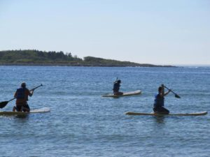 Andy (L) and Enesi (R) learning the basic of standup paddleboarding in Kennebunkport ME