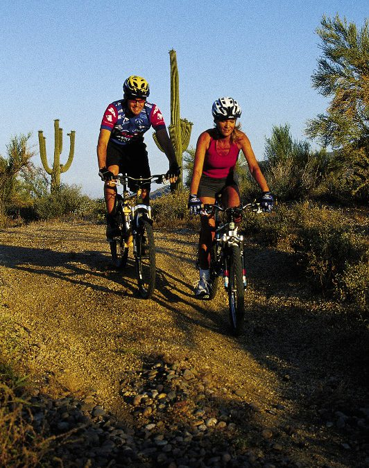 How about a bike ride in the dark in the Sonoran Desert?