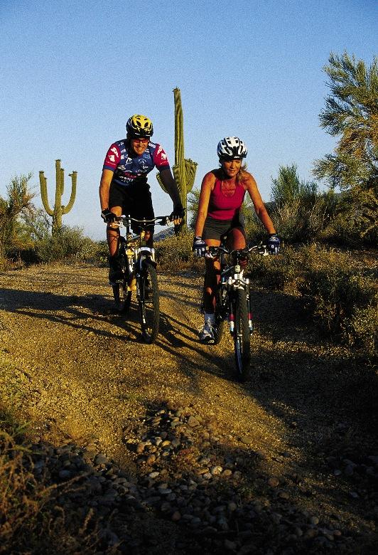 Biking in the Sonoran Desert