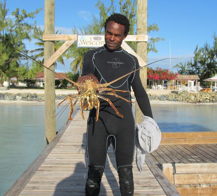 Remembering a memorable sailing trip and lobsters on Anegada