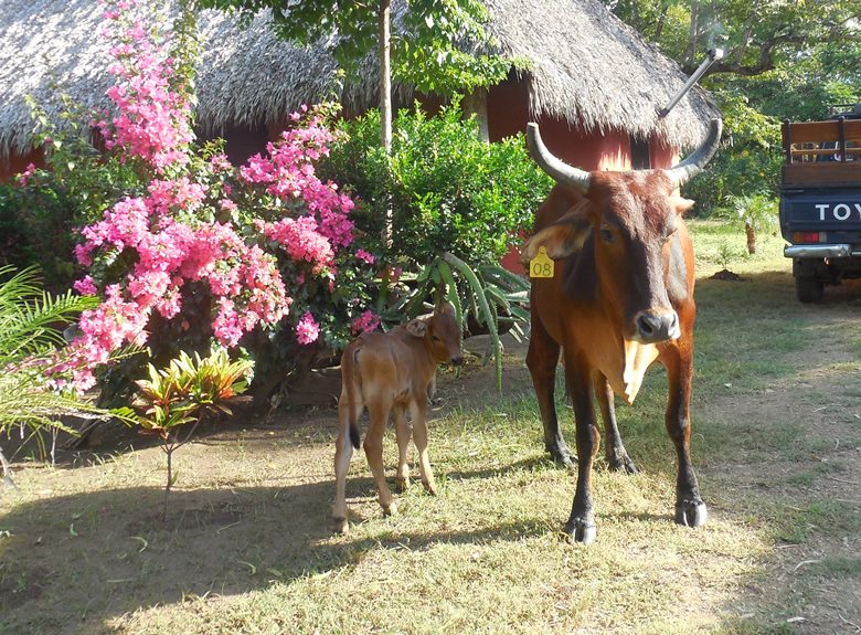 Families discover benefits of ecotourism in Nicaragua