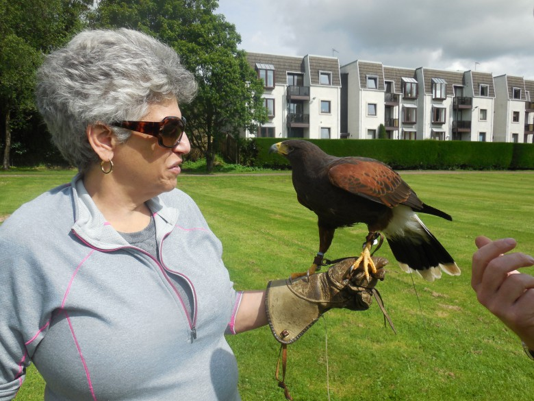 At Gleneagles, falconry is more than for the birds
