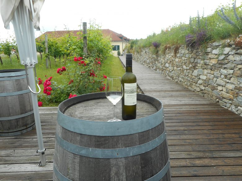 At the Winzer Krems cooperative winery