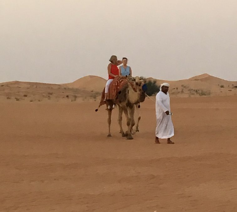 To Dubai – Theme Parks, Deserts, Beaches and Culture