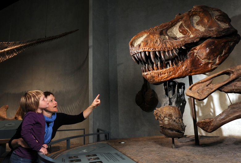 Dinosaurs aplenty at the Denver Museum of Natural Science