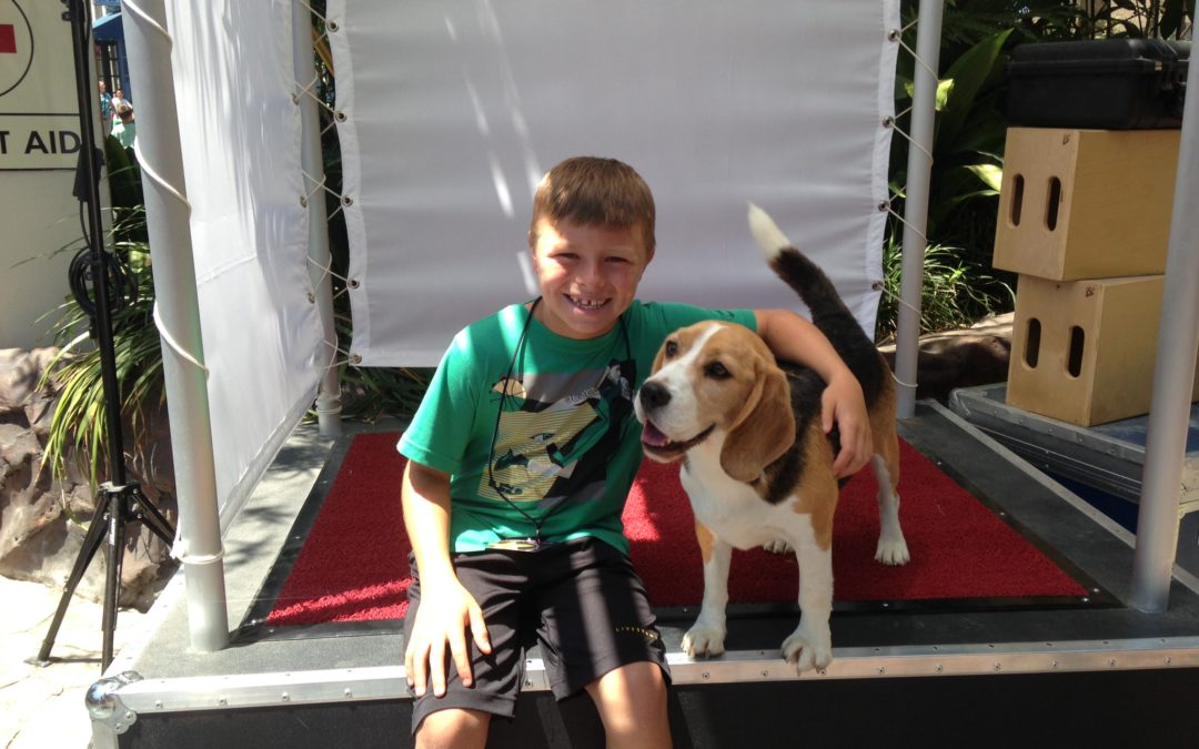 Universal Hollywood through the eyes an 11-year-old