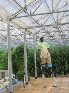 Farming on stilts in the hydroponic garden at CuisinArt Resort Anguilla