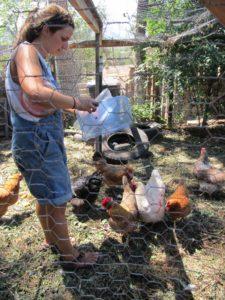 Mel feeding the chickens