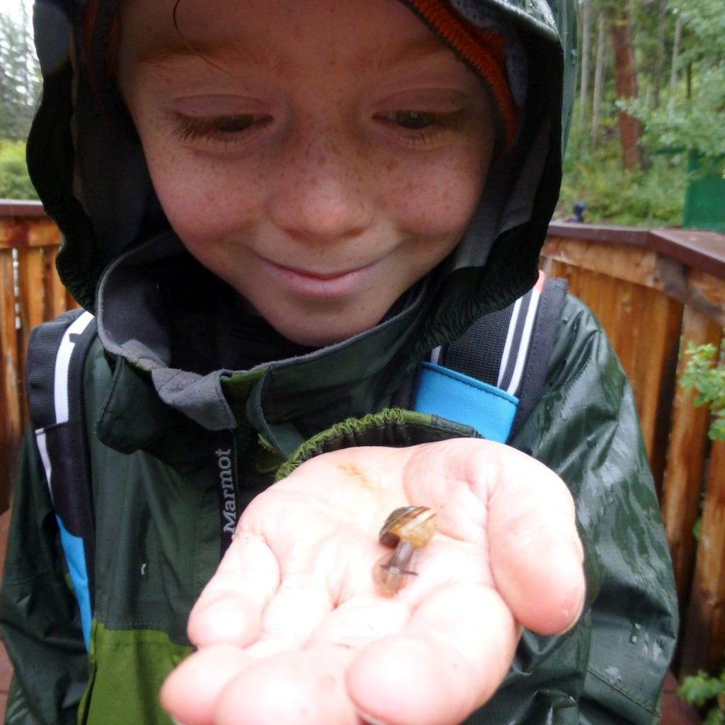 Getting up-close and personal with a snail