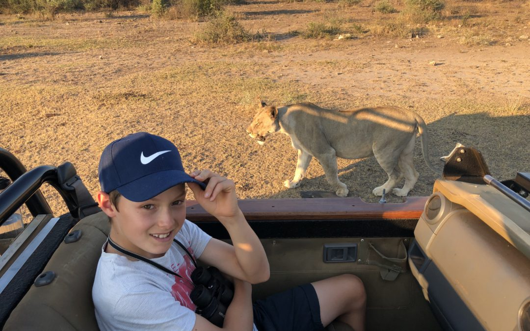 On a safari planned for more than seeing amazing wildlife