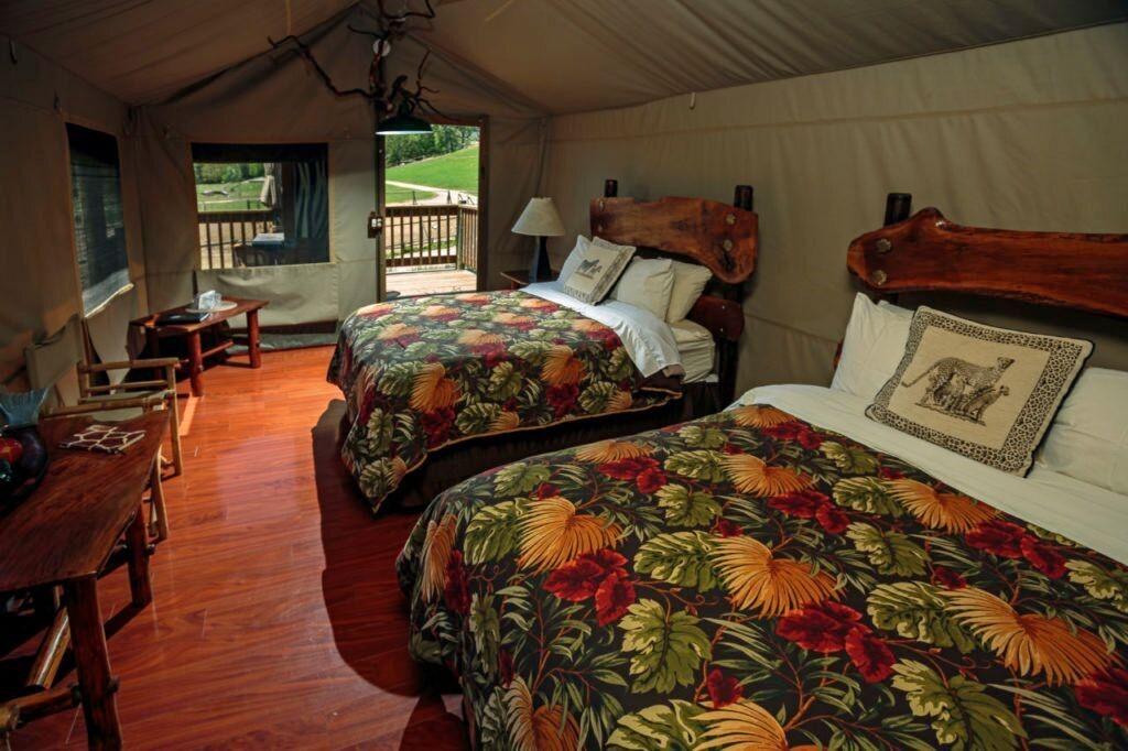 Inside Safari West's luxe tent rooms