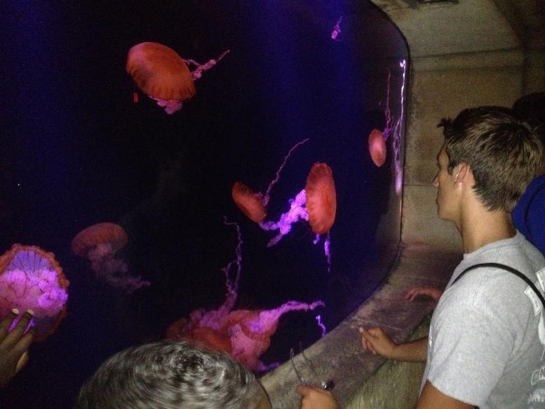 Atlantis resort exceeds teen's expectations
