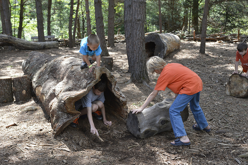 Kids playing in the Unique Pines at The Wildl Center in Tupper Lake, NY