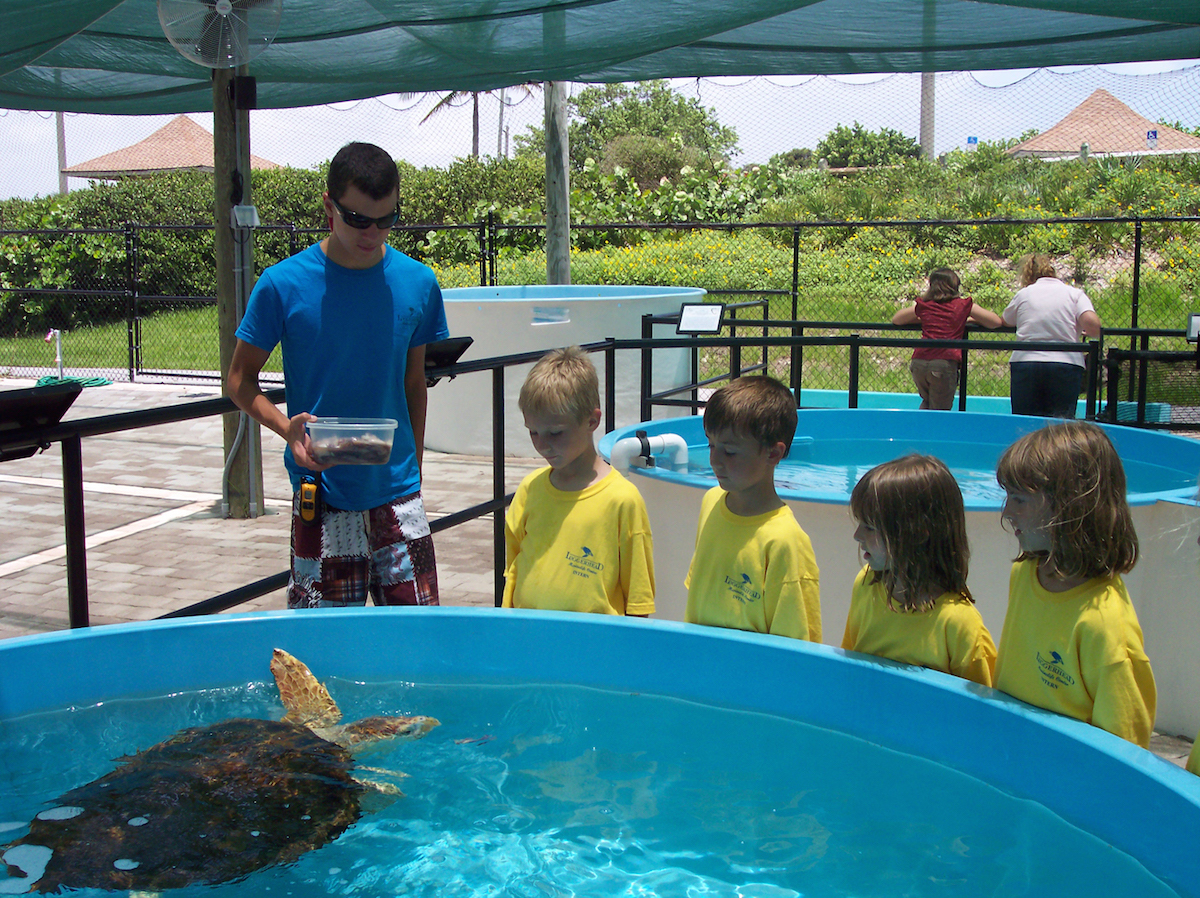 Kids learning about sea turtles at Loggerhead Marinelife Center