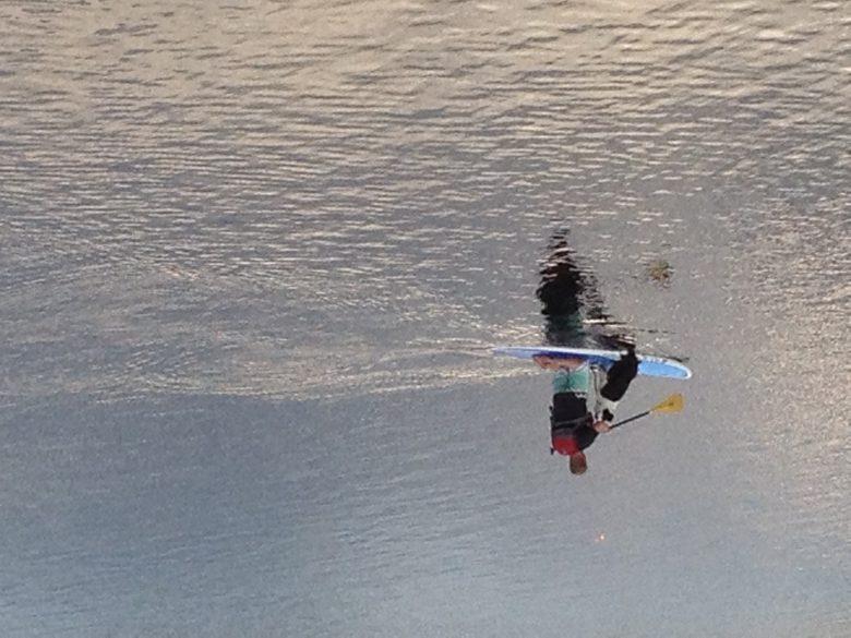 Man, dog and paddleboard on Lake Placid