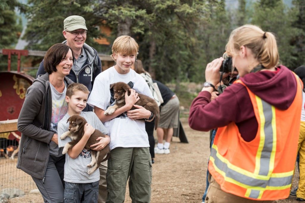 Meet sled dog puppies on a Princess Cruises shore excursion in Alaska. Photo c. Carnival Cruise Lines