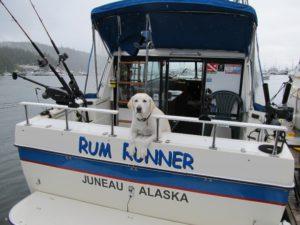 Moon the dog on the Rum Runner