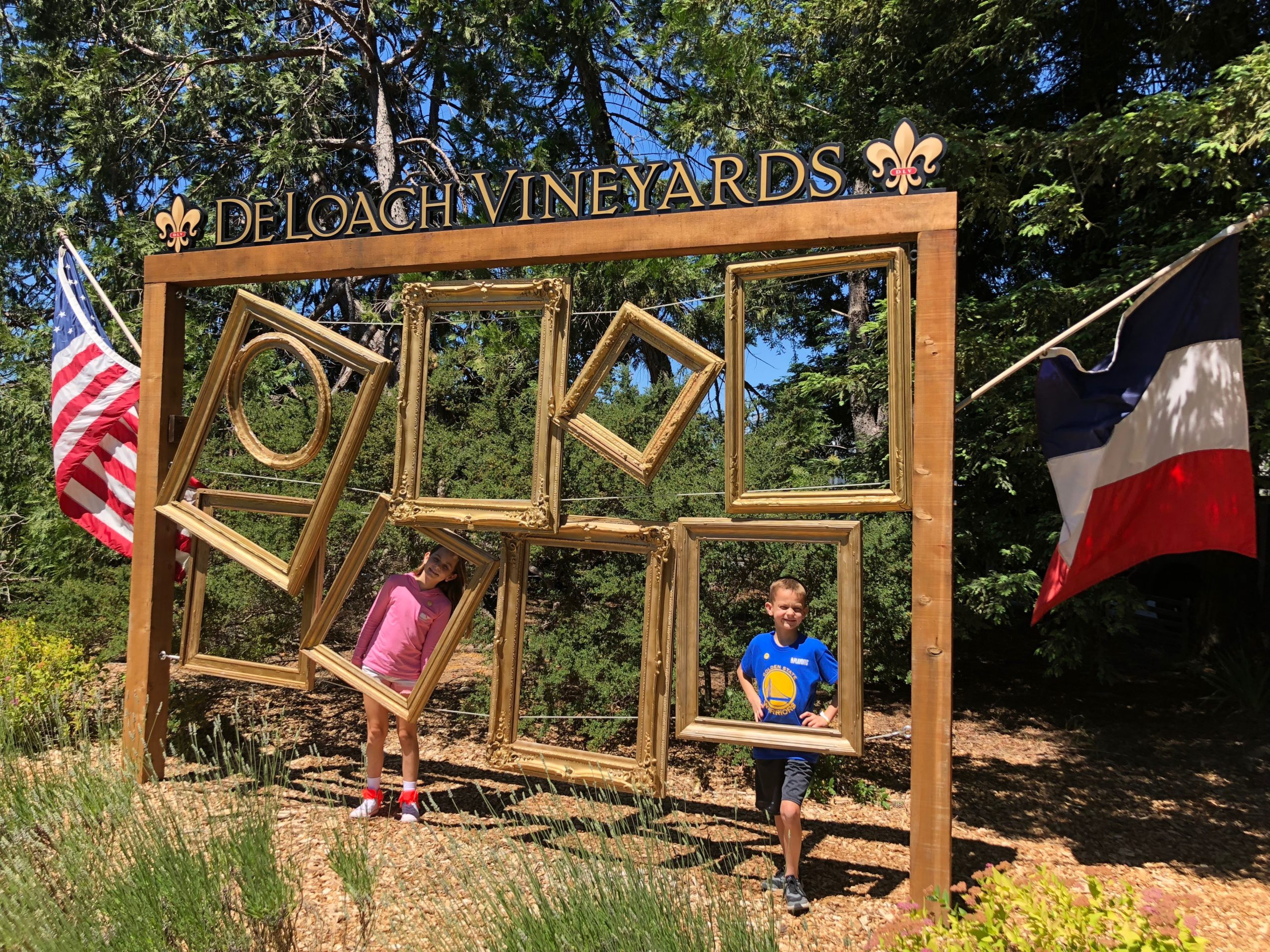 Paying a visit to the DeLoach vineyard winery