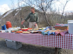 Picnic lunch on the park road on way to Camp Denali