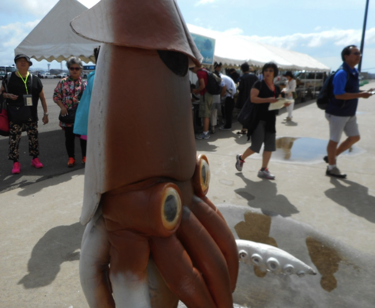 A squid greets us in Hakodate, Japan