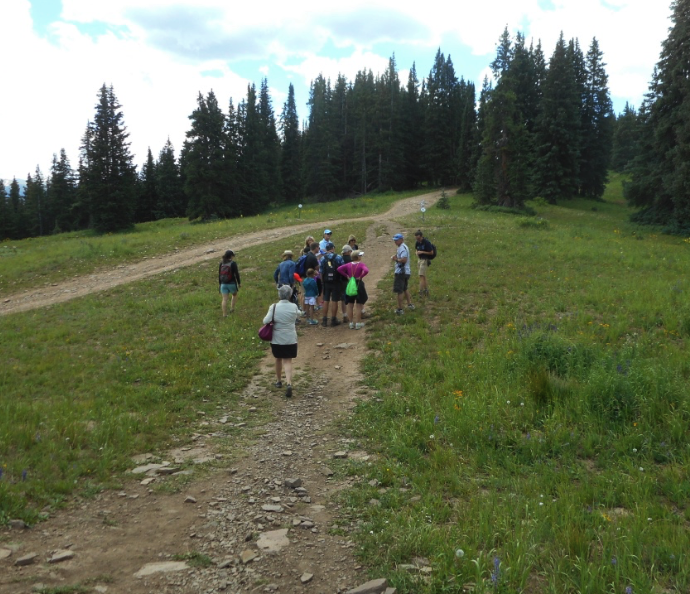 A hike on Aspen Mountain guided by the Aspen Center for Environmental Studies