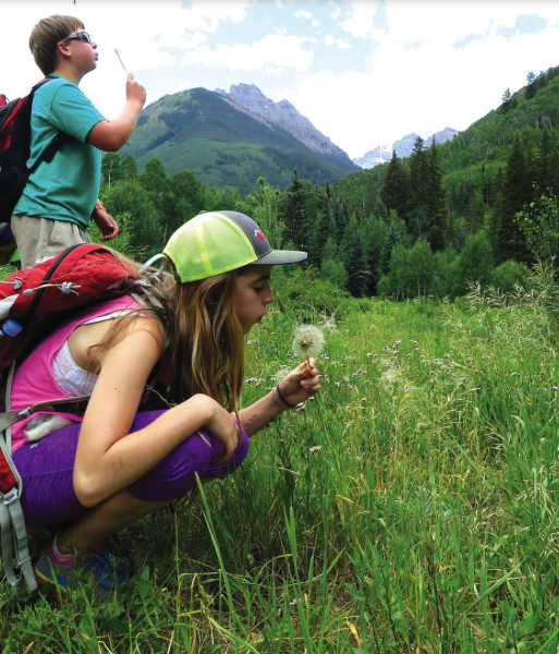 Wildflower studies with ACES