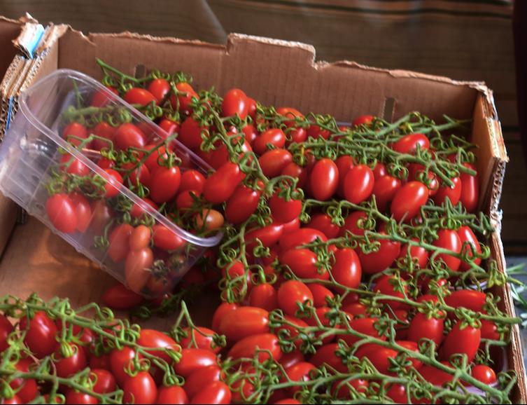 Delicious tomatoes at the Rialto Market