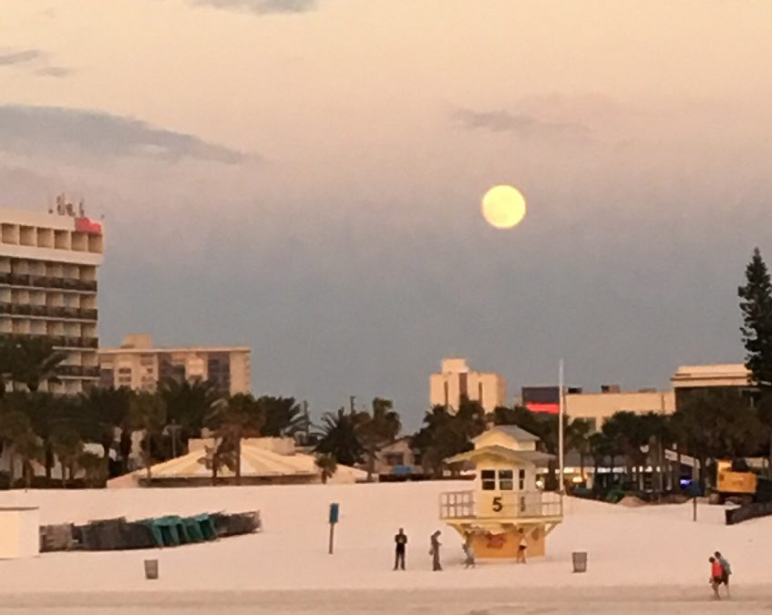 Plenty of options for lodging in Clearwater FL