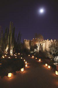 The Desert Botanical Garden's Las Noches de Las Luminaries