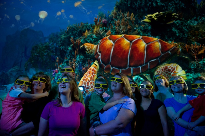 TurtleTrek the 3D movie at Seaworld Orlando