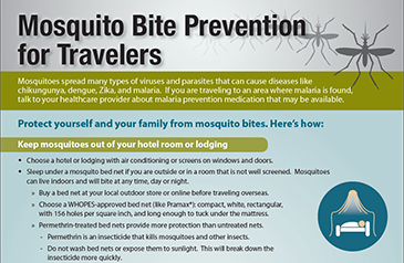 The Zika virus and family travel: what you should know