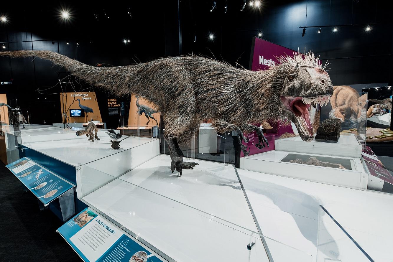 COSI virtual tour of the Dinosaur Gallery.