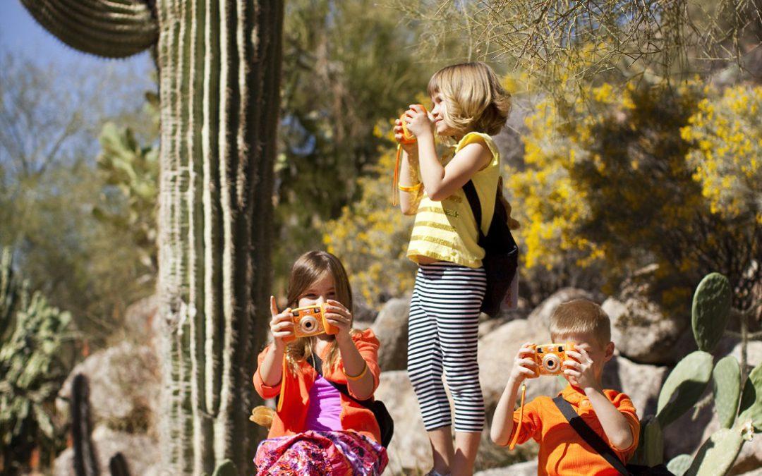 Reasons to brave Arizona's summer heat