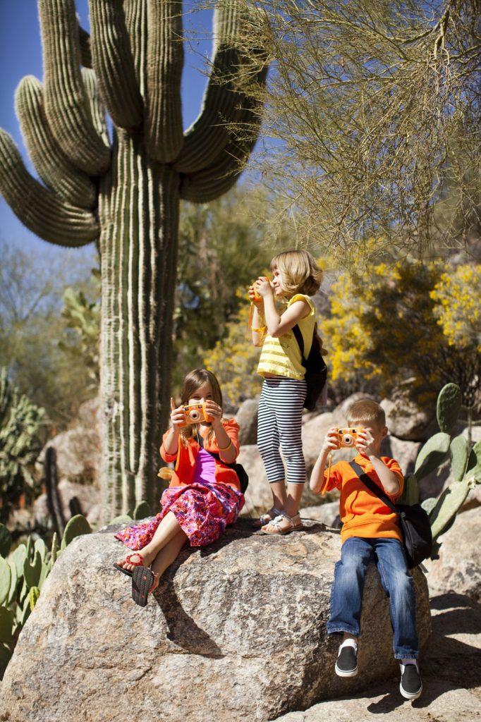 Cactus Garden at The Phoenician.