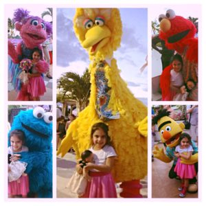 All of the Sesame Street characters at the parade