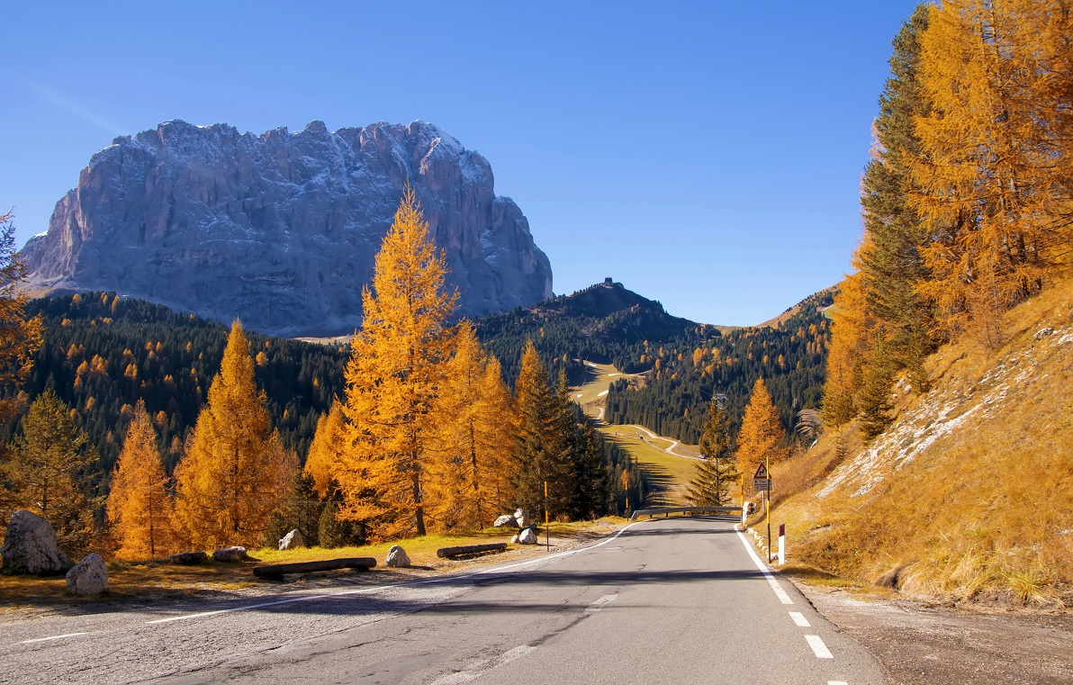 Fall color in the Dolomite Mountains