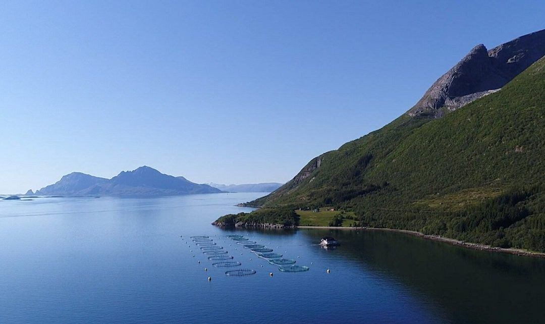 Dreaming of a Sustainable Trip to Norway In 2021