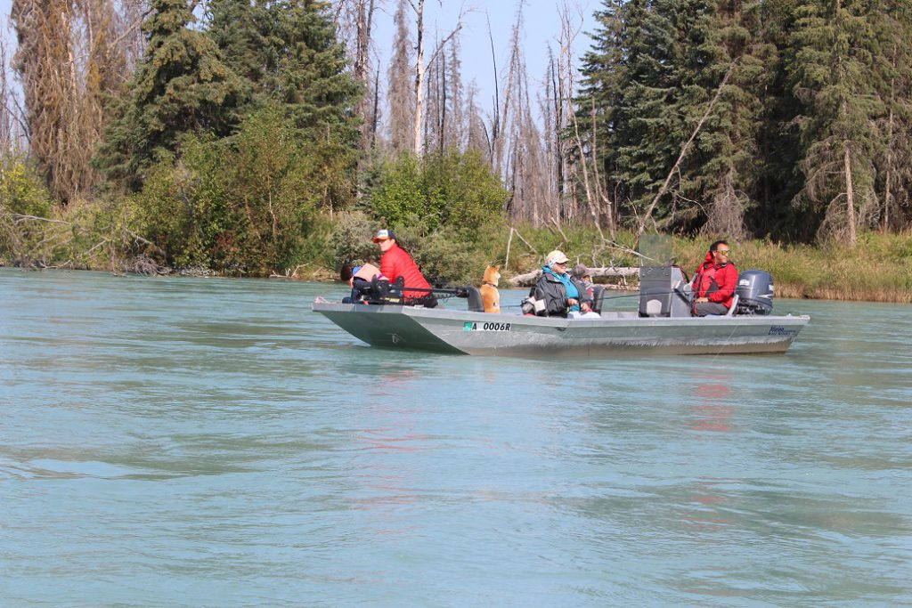 Chili the dog's family in their boat on the Kenai River