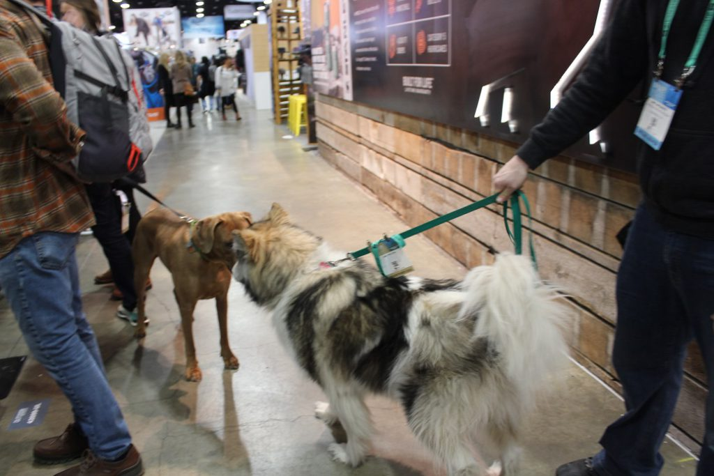 Doggos are welcome winter or summer at Outdoor Retailer and have frequent meetups in the aisles