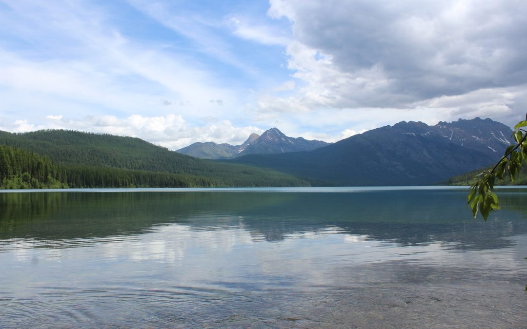 At Glacier National Park: a Covid summer like no other