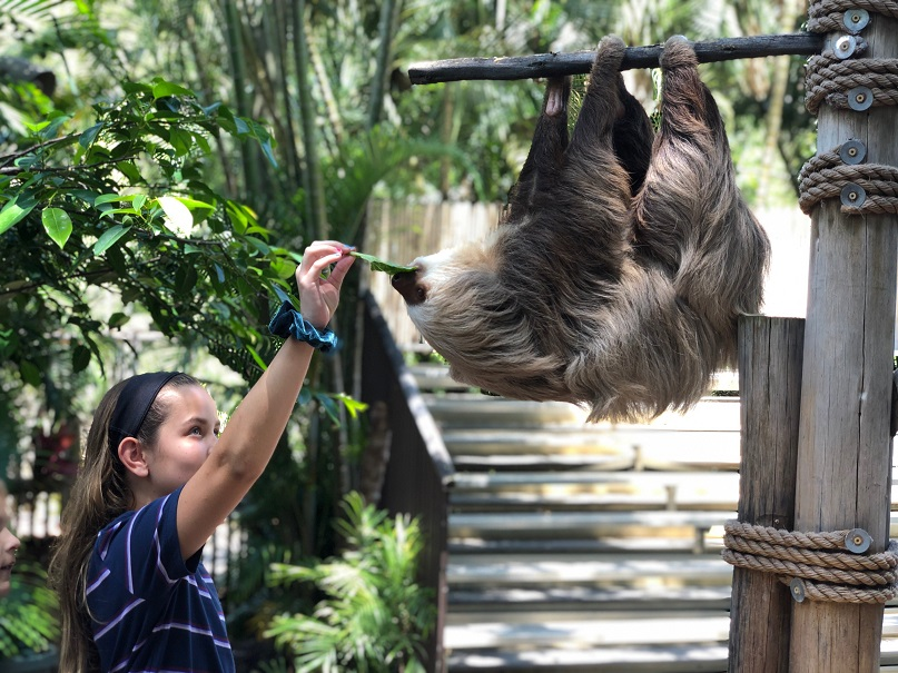 Kids get to feed Wilbur during visiting hours